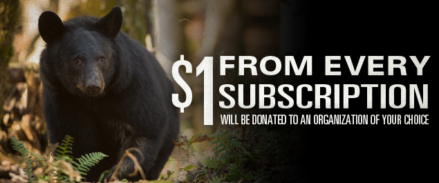 Donate to your local NV Wildlife Organziation / Association