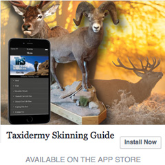 Taxidermy Skinning Guide APP